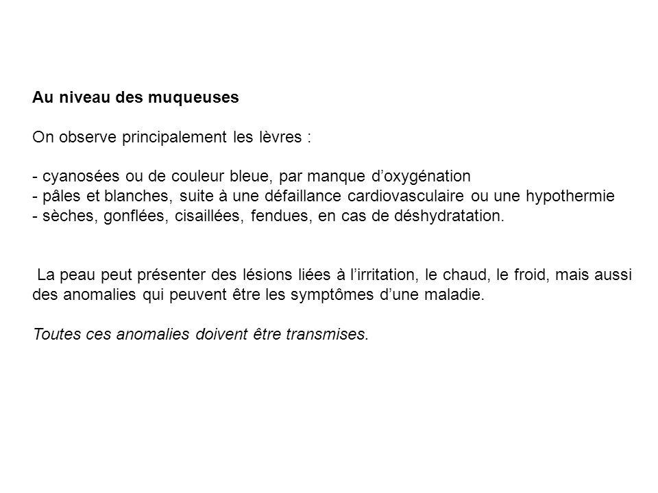 Au niveau des muqueuses On observe principalement les lèvres : - cyanosées ou de couleur bleue, par manque doxygénation - pâles et blanches, suite à u