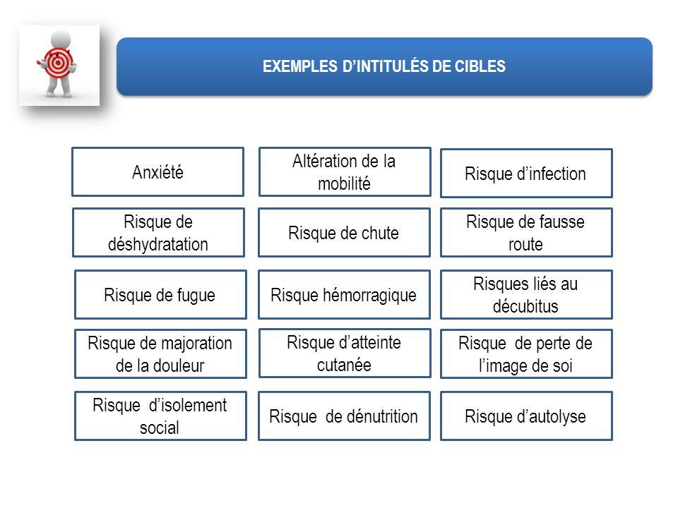 Risque dautolyse Risque dinfection Risque de déshydratation Risque de chute Risque de fausse route Risque de fugueRisque hémorragique Risques liés au
