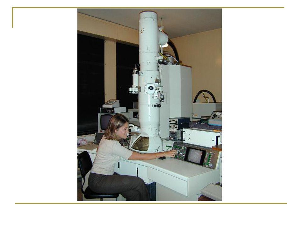 Voici le résultat dune feuille dor observée au microscope à effet tunnel.effet tunnel.