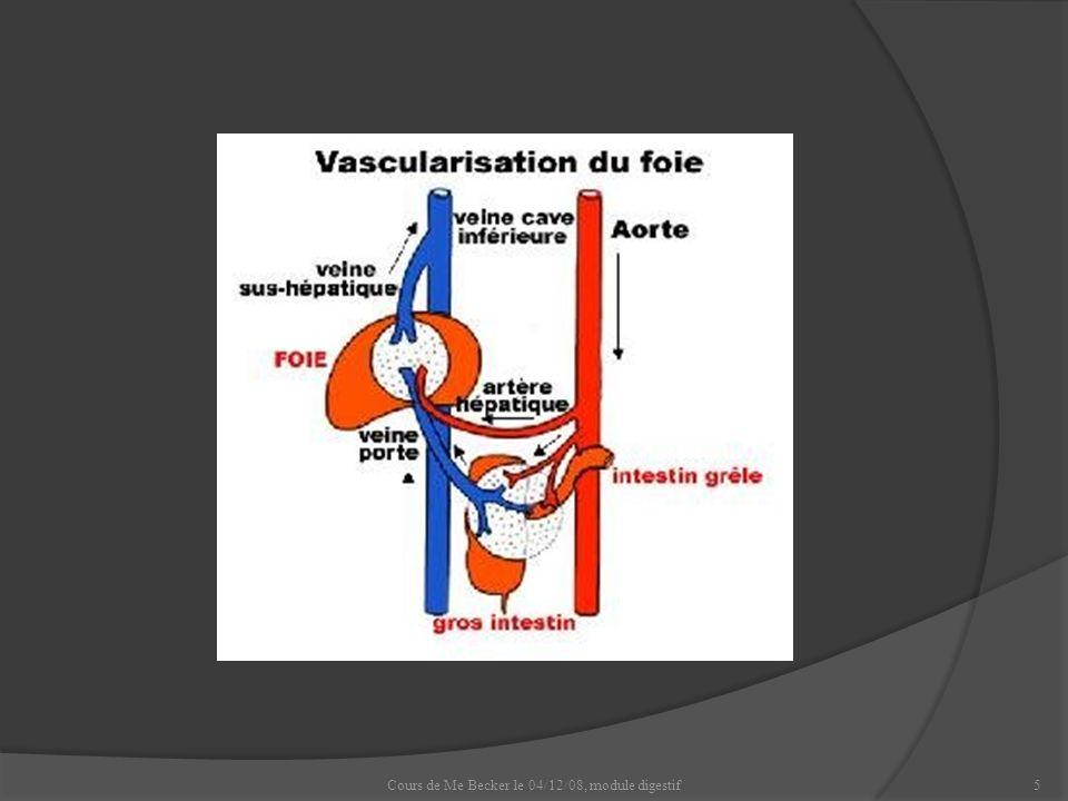 Cours de Me Becker le 04/12/08, module digestif16 Encéphalopathie hépatique.
