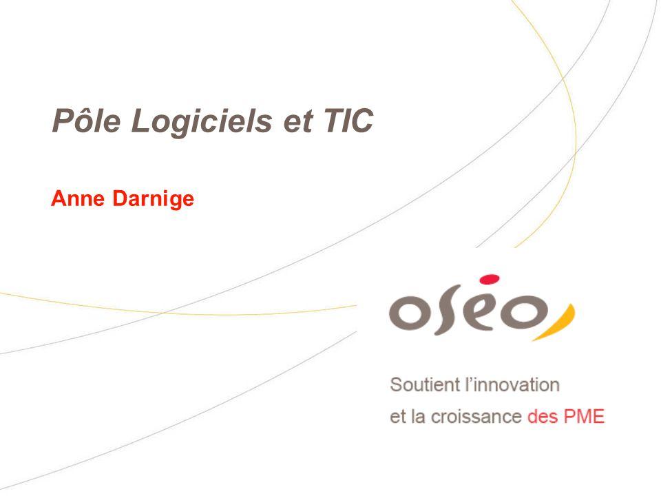 Pôle Logiciels et TIC Anne Darnige