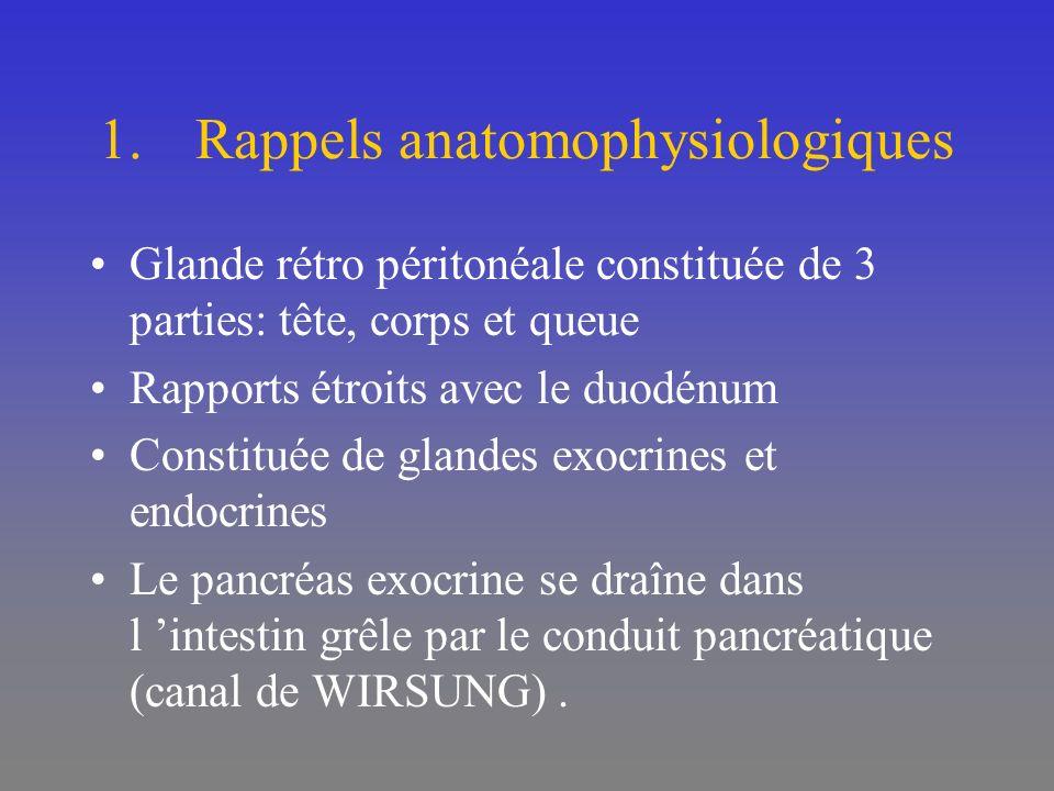 1.Rappels anatomophysiologiques Glande rétro péritonéale constituée de 3 parties: tête, corps et queue Rapports étroits avec le duodénum Constituée de