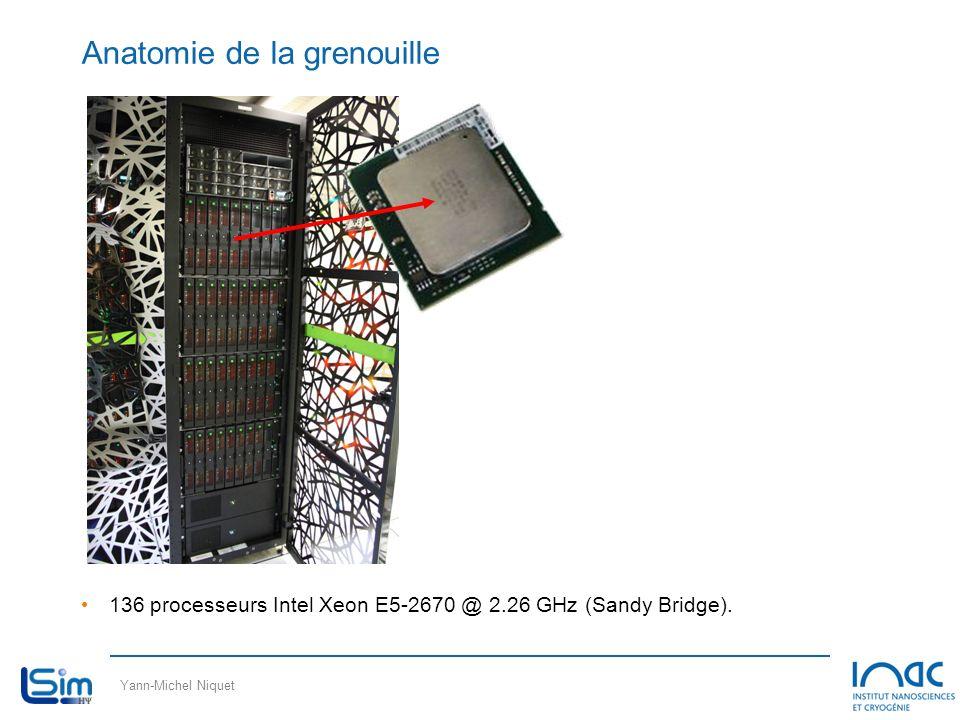 Yann-Michel Niquet Anatomie de la grenouille 136 processeurs Intel Xeon E5-2670 @ 2.26 GHz (Sandy Bridge).