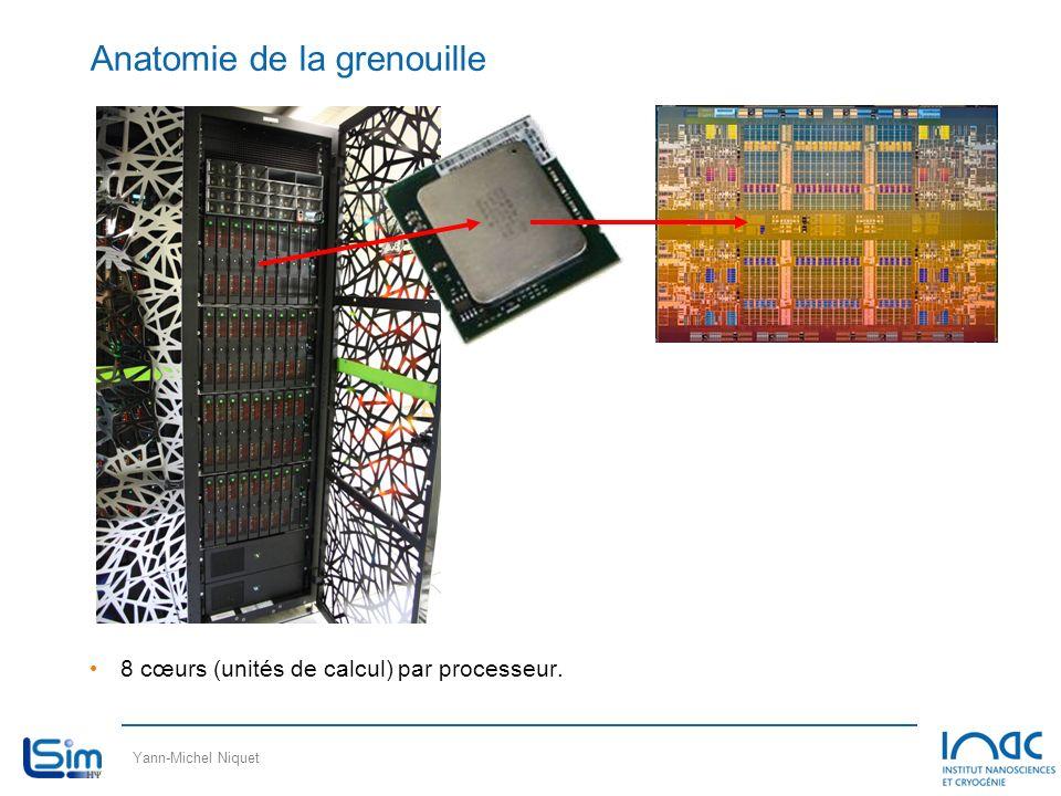 Yann-Michel Niquet Anatomie de la grenouille 8 cœurs (unités de calcul) par processeur.