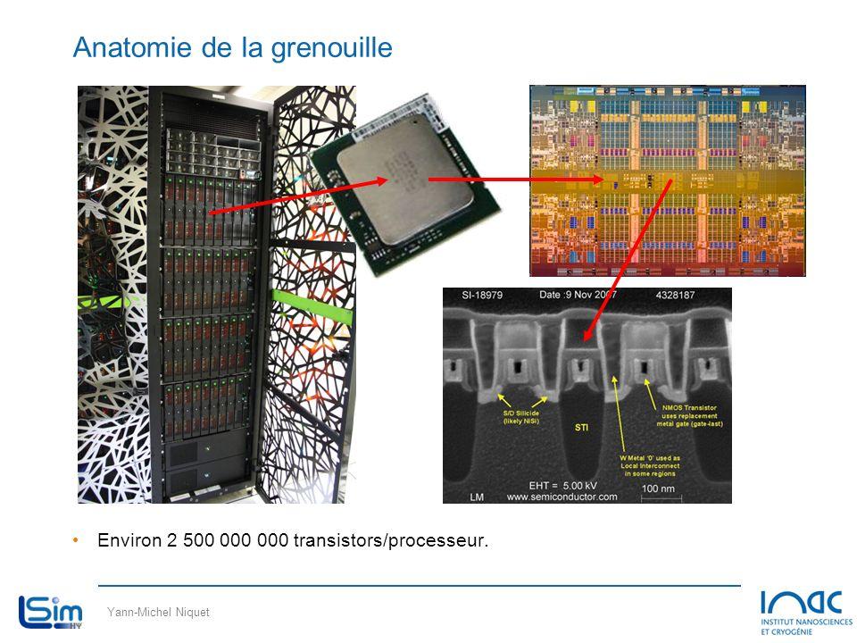 Yann-Michel Niquet Anatomie de la grenouille Environ 2 500 000 000 transistors/processeur.