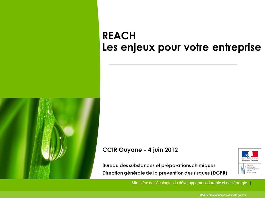 1 REACH Les enjeux pour votre entreprise Ministère de l'écologie, du développement durable et de l'énergie WWW.developpement-durable.gouv.fr CCIR Guya