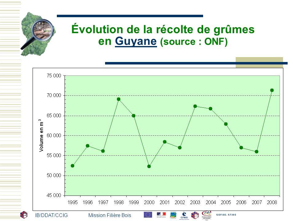 IB/DDAT/CCIG Mission Filière Bois Évolution de la récolte de grûmes en Guyane (source : ONF)Guyane