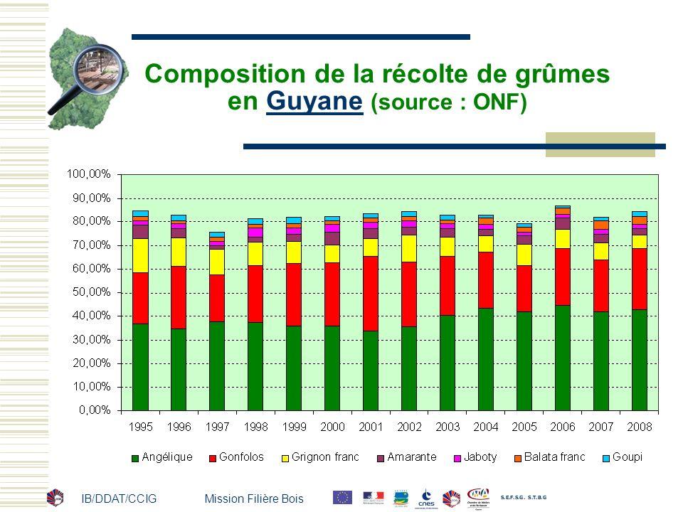 IB/DDAT/CCIG Mission Filière Bois Composition de la récolte de grûmes en Guyane (source : ONF)Guyane
