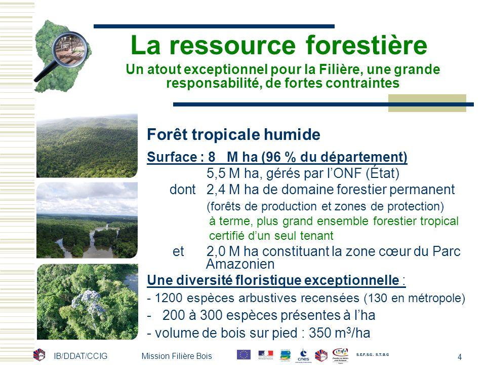 4 La ressource forestière Forêt tropicale humide Surface : 8 M ha (96 % du département) 5,5 M ha, gérés par lONF (État) dont 2,4 M ha de domaine fores