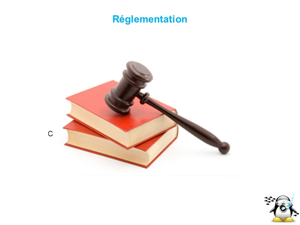 Cliquez pour modifier le style des sous-titres du masque Réglementation