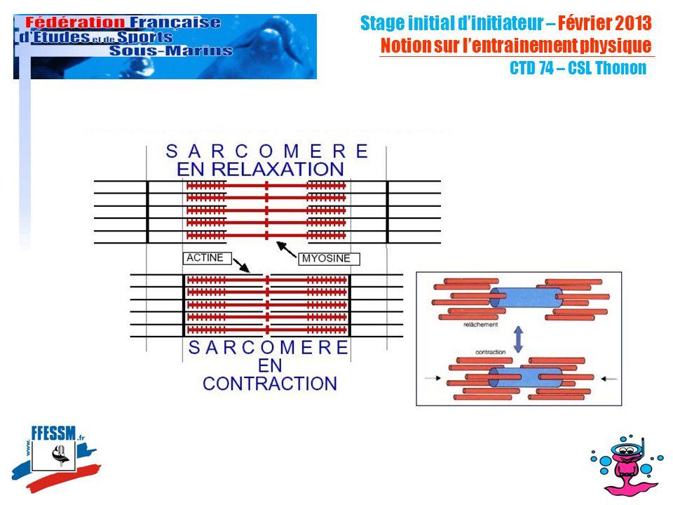 CTD 74 – CSL Thonon Stage initial dinitiateur – Février 2013 Notion sur lentrainement physique