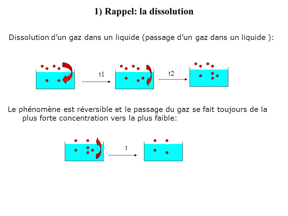 A léquilibre la quantité dazote dissous dans le corps est proportionnelle à la quantité dazote respiré 1) Rappel: la dissolution 0 m 20 m Corps stocke lazote pendant la plongée (oxygène consommé par lorganisme) Corps libère de lazote pendant la remontée Décompression trop rapide = risque daccident de décompression = libération anarchique dazote Décompression en respectant le moyen de décompression (ordi, table) Azote respiré Azote dissous dans le corps