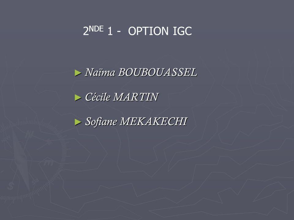Naïma BOUBOUASSEL Naïma BOUBOUASSEL Cécile MARTIN Cécile MARTIN Sofiane MEKAKECHI Sofiane MEKAKECHI 2 NDE 1 - OPTION IGC