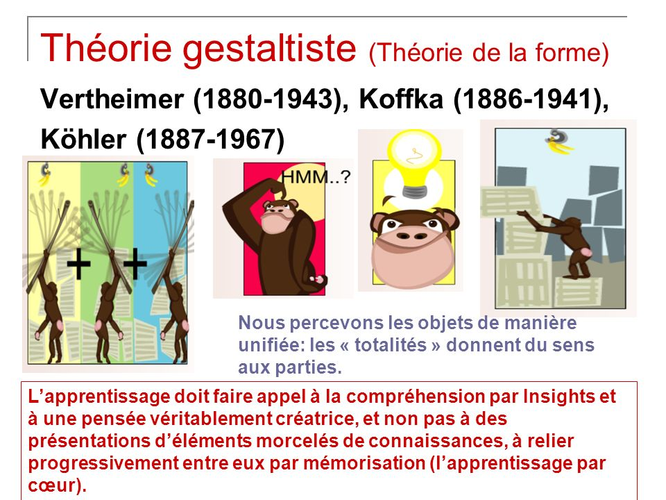 Théorie gestaltiste (Théorie de la forme) Vertheimer (1880-1943), Koffka (1886-1941), Köhler (1887-1967) Nous percevons les objets de manière unifiée: les « totalités » donnent du sens aux parties.