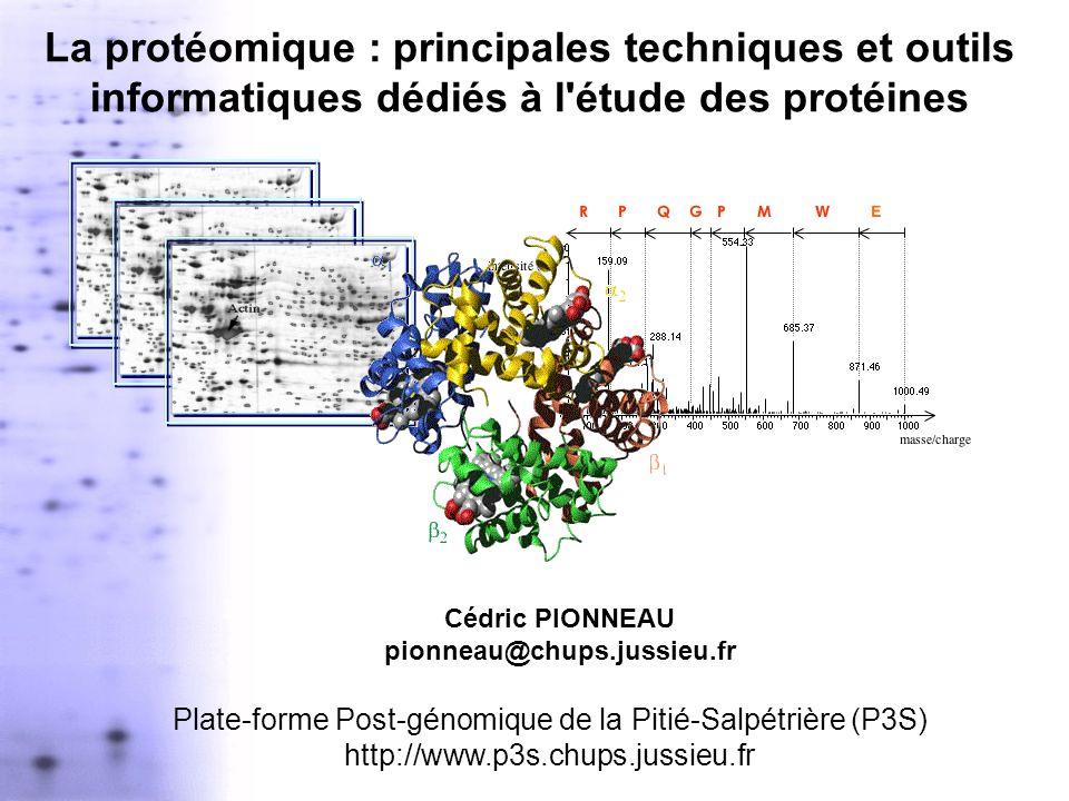 La protéomique : principales techniques et outils informatiques dédiés à l'étude des protéines Cédric PIONNEAU pionneau@chups.jussieu.fr Plate-forme P