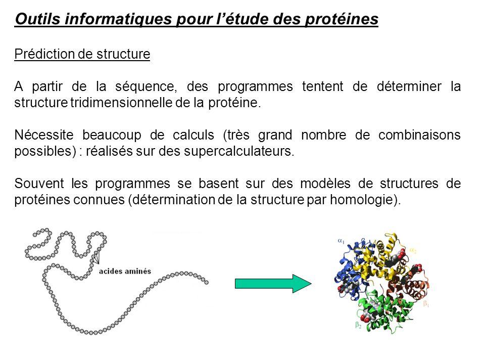Prédiction de structure A partir de la séquence, des programmes tentent de déterminer la structure tridimensionnelle de la protéine. Nécessite beaucou