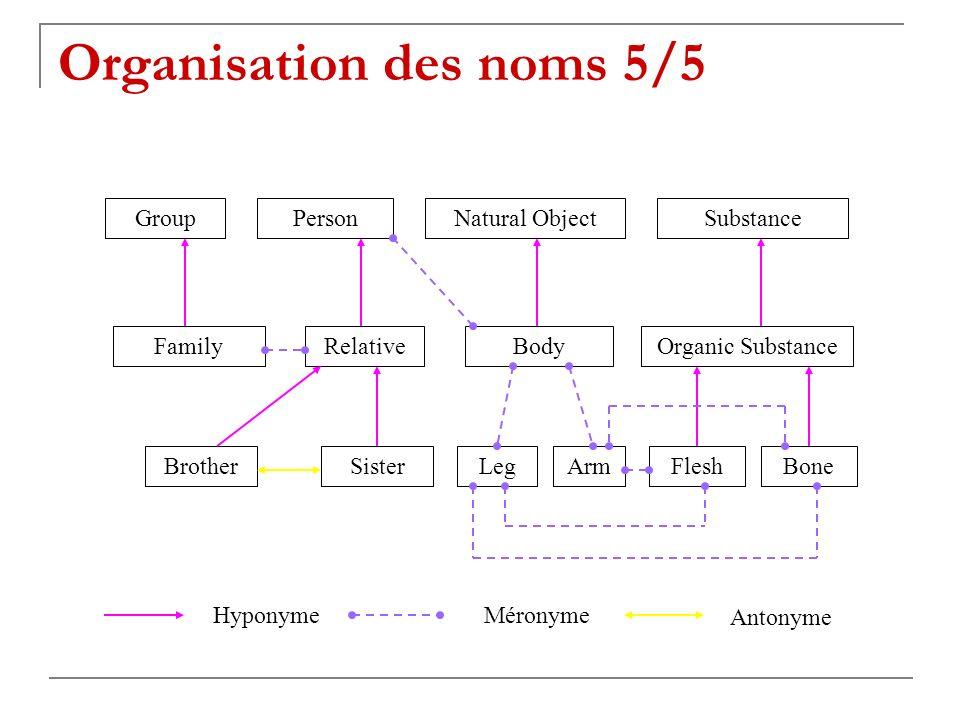 PersonGroupNatural ObjectSubstance FamilyRelativeBodyOrganic Substance ArmSisterBrotherLegFleshBone Hyponyme Méronyme Antonyme Organisation des noms 5/5