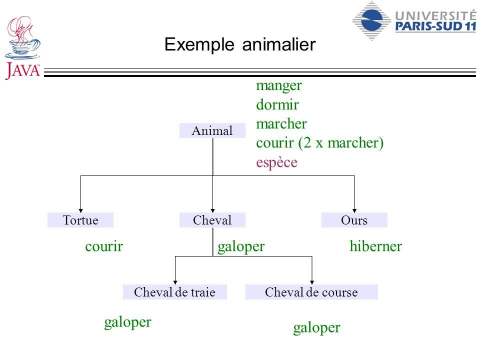 Exemple animalier Animal ChevalOursTortue manger dormir marcher courir (2 x marcher) espèce galopercourirhiberner Cheval de courseCheval de traie galo