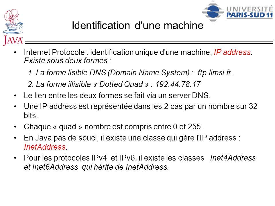 Identification d'une machine Internet Protocole : identification unique d'une machine, IP address. Existe sous deux formes : 1.La forme lisible DNS (D