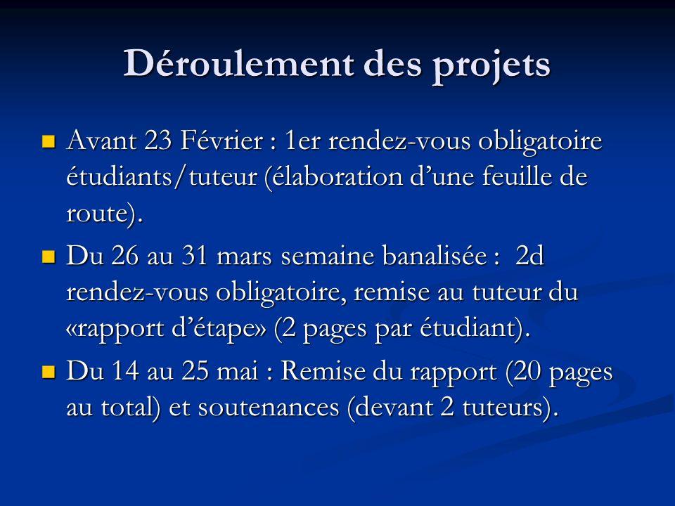 Déroulement des projets Avant 23 Février : 1er rendez-vous obligatoire étudiants/tuteur (élaboration dune feuille de route). Avant 23 Février : 1er re