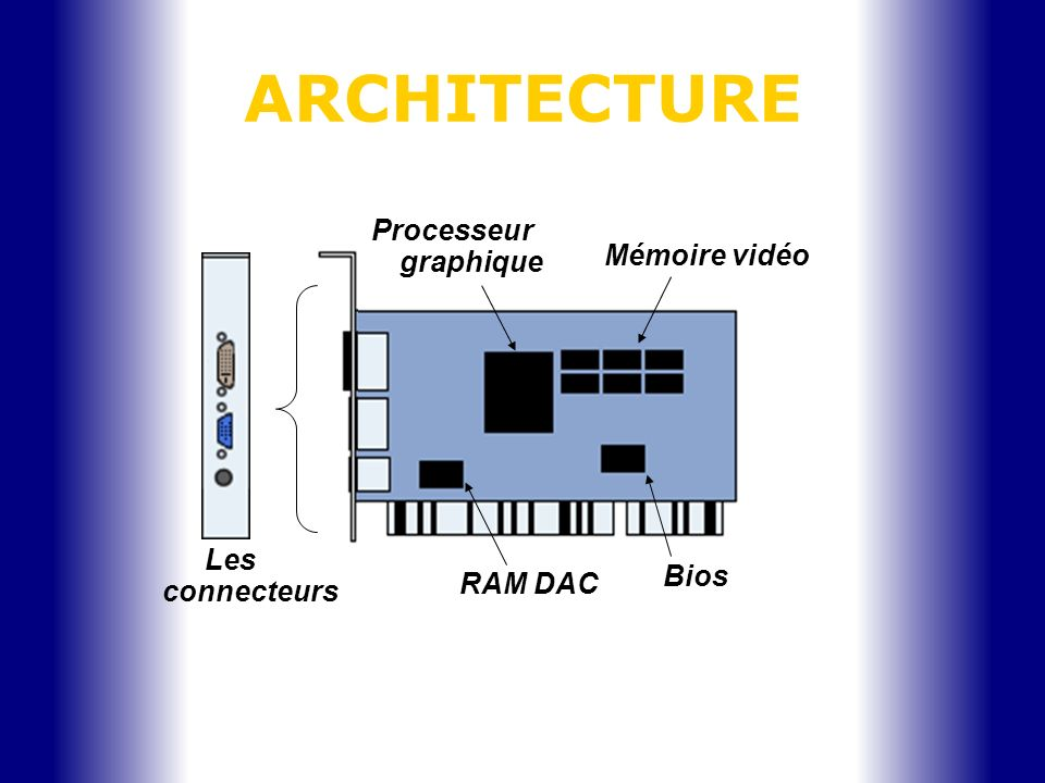ARCHITECTURE Les connecteurs Processeur graphique Mémoire vidéo Bios RAM DAC
