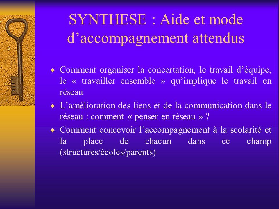 SYNTHESE : Aide et mode daccompagnement attendus Comment organiser la concertation, le travail déquipe, le « travailler ensemble » quimplique le travail en réseau Lamélioration des liens et de la communication dans le réseau : comment « penser en réseau » .
