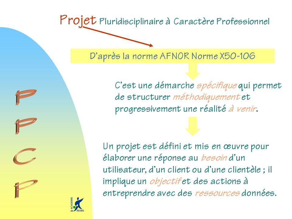 Projet Pluridisciplinaire à Caractère Professionnel Daprès la norme AFNOR Norme X50-106 Cest une démarche spécifique qui permet de structurer méthodiq