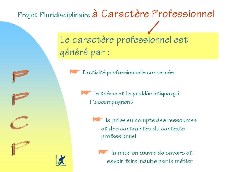Projet Pluridisciplinaire à Caractère Professionnel Le caractère professionnel est généré par : lactivité professionnelle concernée le thème et la pro
