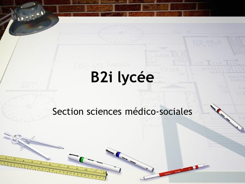 B2i lycée Section sciences médico-sociales