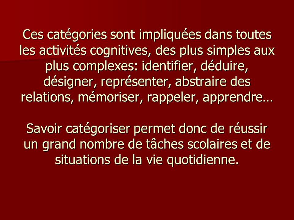 Ces catégories sont impliquées dans toutes les activités cognitives, des plus simples aux plus complexes: identifier, déduire, désigner, représenter,