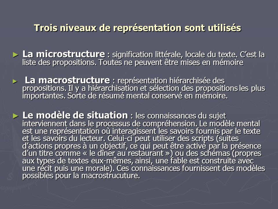 Trois niveaux de représentation sont utilisés Trois niveaux de représentation sont utilisés La microstructure : signification littérale, locale du tex