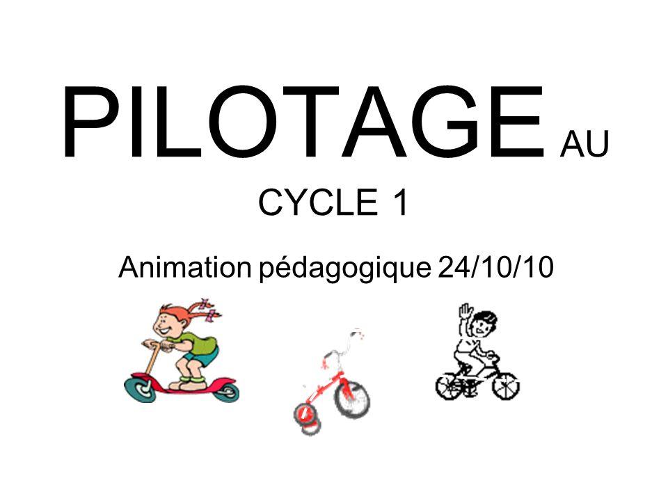 PILOTAGE AU CYCLE 1 Animation pédagogique 24/10/10