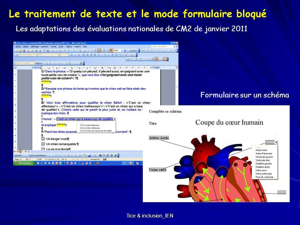 Tice & inclusion_IEN Les adaptations des évaluations nationales de CM2 de janvier 2011 Le traitement de texte et le mode formulaire bloqué Formulaire