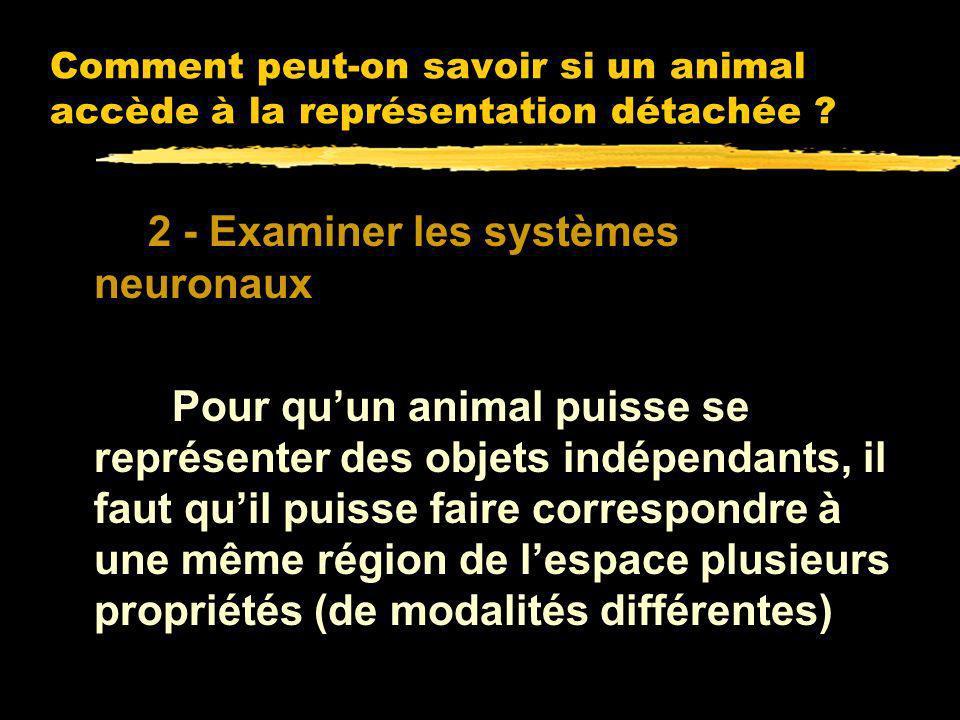 Comment peut-on savoir si un animal accède à la représentation détachée ? Deux méthodes possibles : 1 - Analyser ses comportements pour voir sils mani