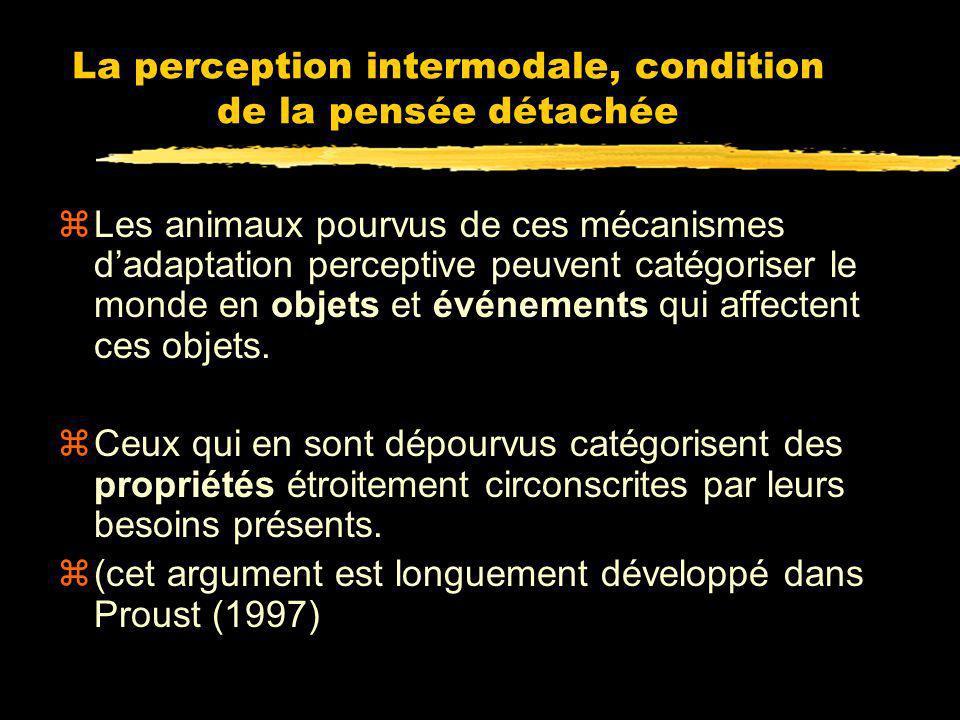 Importance de la recalibration pour la pensée détachée zCe mécanisme de recalibration (incluant les neurones bimodaux) permet à lanimal de corriger se