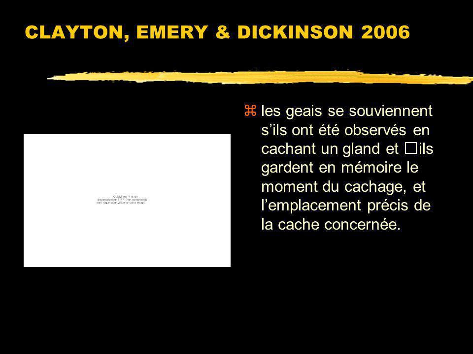 CLAYTON, EMERY & DICKINSON 2006 zUsage flexible de la mémoire épisodique chez le geai de Californie. zAphelocoma californica
