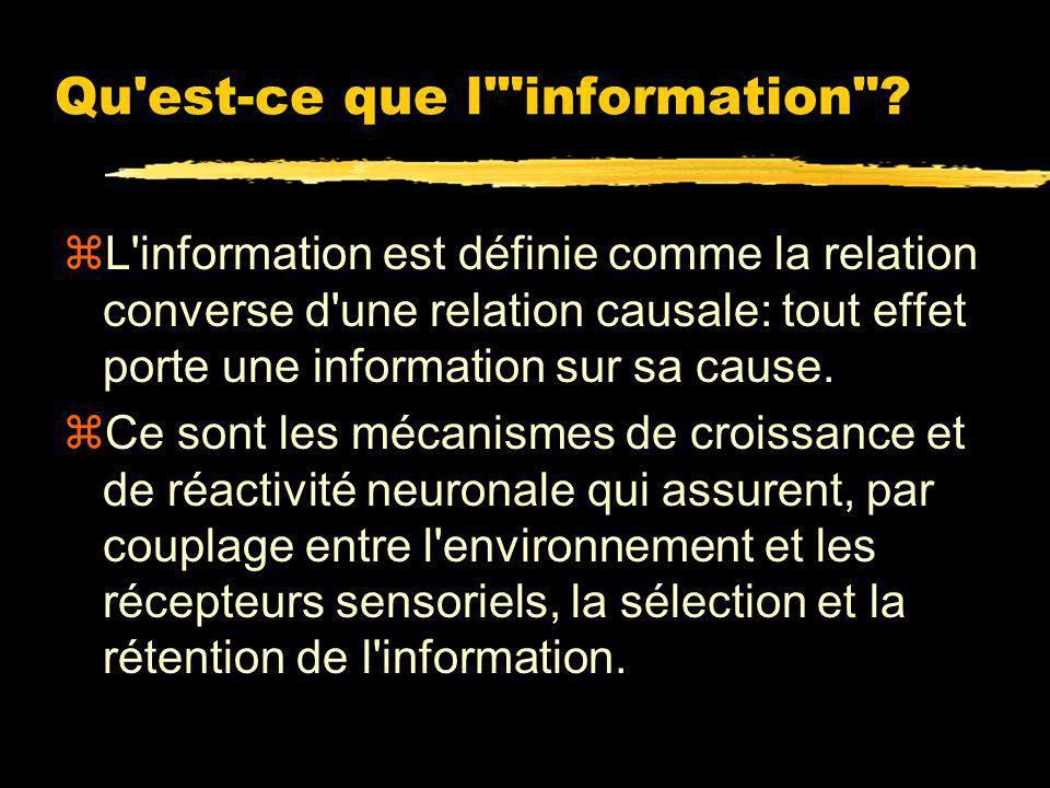 Par représentation, on entend zUne structure matérielle (par ex. un ensemble de neurones) yqui porte une information utile à la vie de lorganisme. yEt