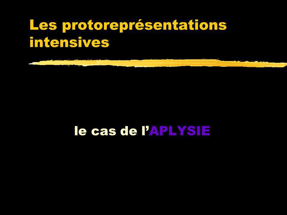 Quentend-on par représentation? zQuest-ce qui fait quune représentation a tel ou tel contenu (fait référence à X plutôt quà Y) ? zC'est le couplage fo
