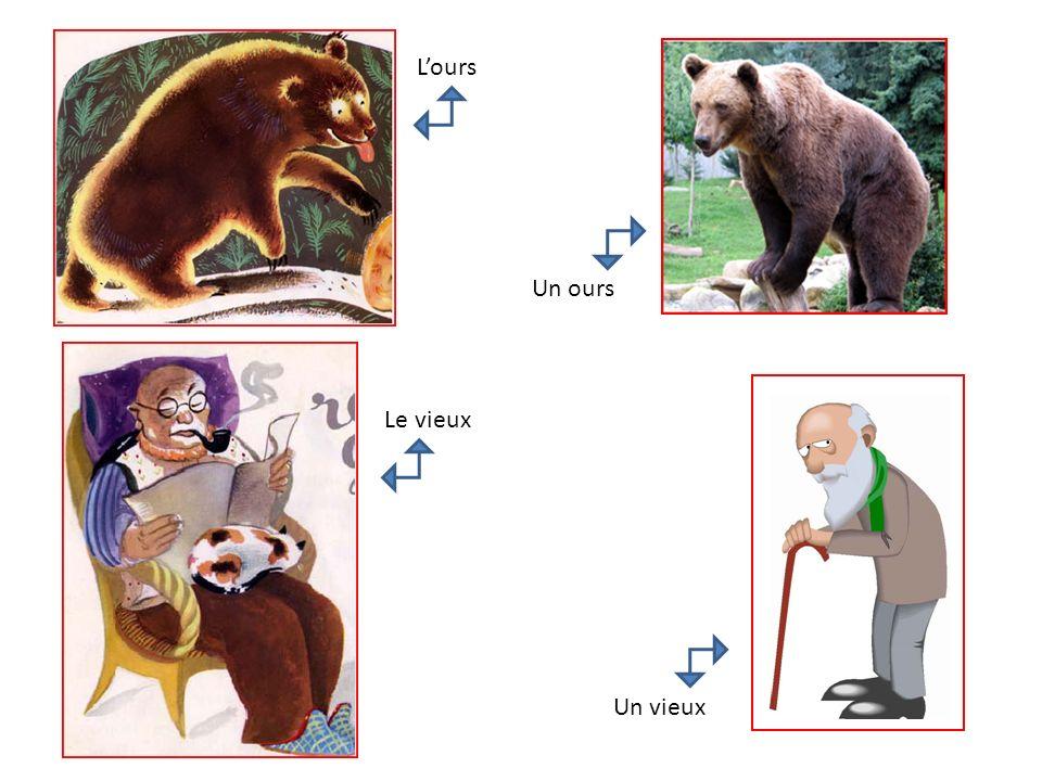 Lours Un ours Le vieux Un vieux