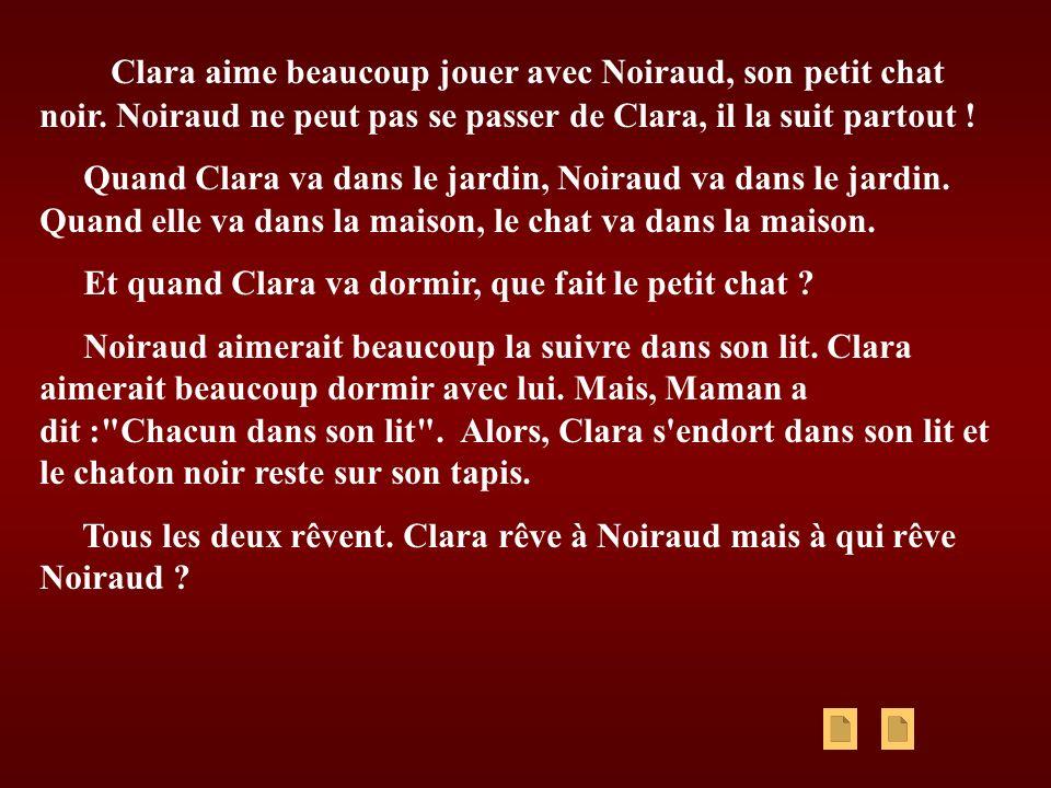 Clara aime beaucoup jouer avec Noiraud, son petit chat noir. Noiraud ne peut pas se passer de Clara, il la suit partout ! Quand Clara va dans le jardi