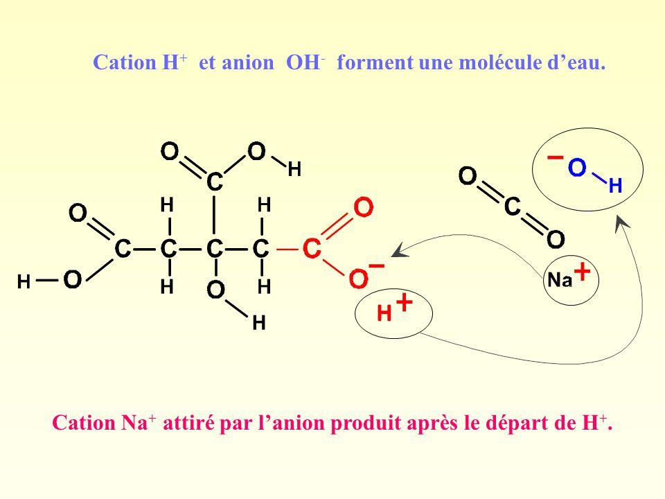 Cation H + et anion OH - forment une molécule deau. Cation Na + attiré par lanion produit après le départ de H +.
