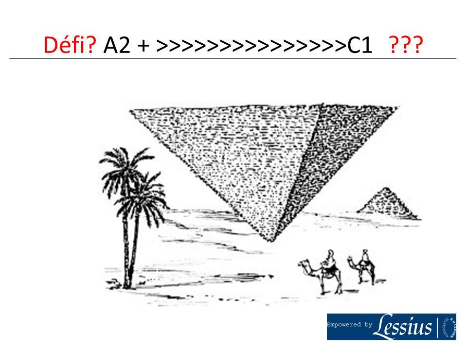 2.Les représentations.Comprendre en LE, cela veut dire quoi pour les étudiants.