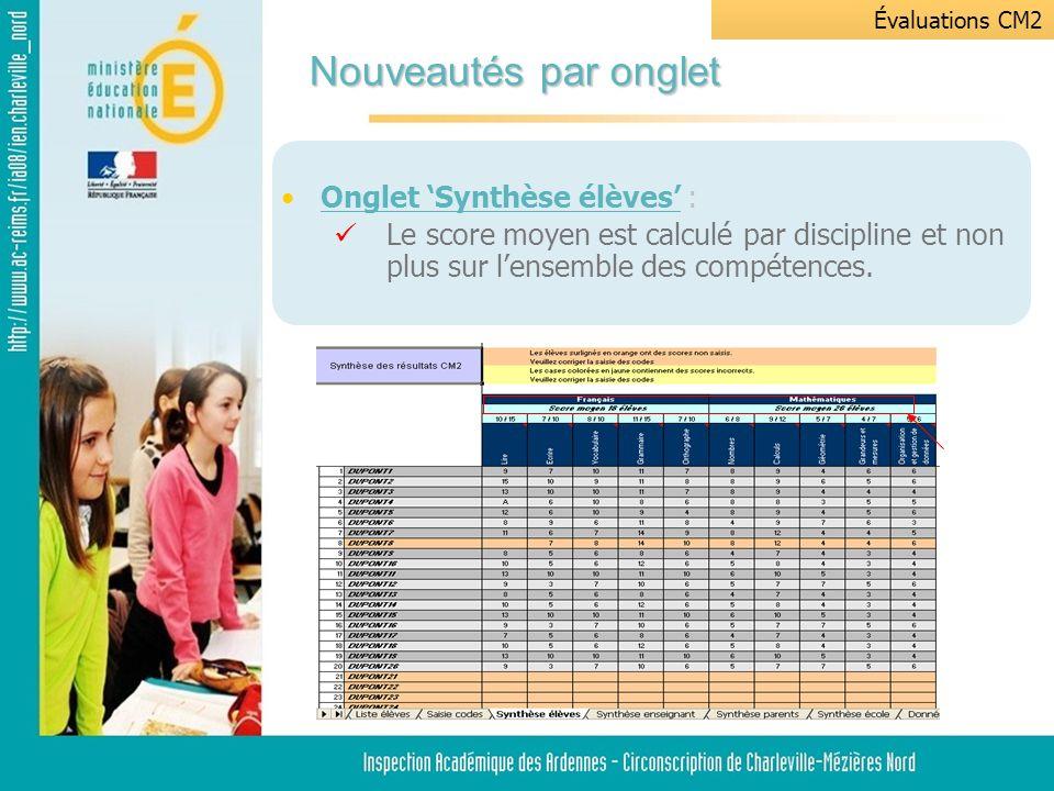 Onglet Saisie codes: Saisie manuelle de 200 élèves maximum sur 100 items.