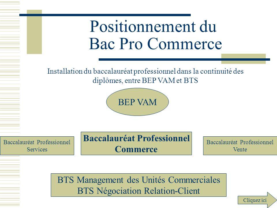 Positionnement du Bac Pro Commerce Installation du baccalauréat professionnel dans la continuité des diplômes, entre BEP VAM et BTS Baccalauréat Profe