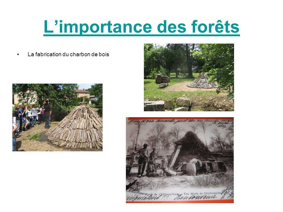Limportance des forêts La fabrication du charbon de bois