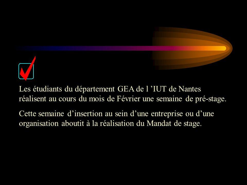 Les étudiants du département GEA de l IUT de Nantes réalisent au cours du mois de Février une semaine de pré-stage. Cette semaine dinsertion au sein d
