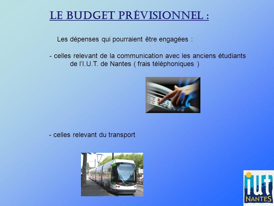 Le budget prévisionnel : Les dépenses qui pourraient être engagées : - celles relevant de la communication avec les anciens étudiants de lI.U.T. de Na