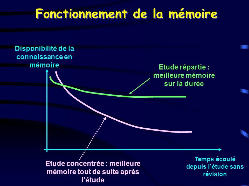 Fonctionnement de la mémoire Disponibilité de la connaissance en mémoire Temps écoulé depuis létude sans révision Etude concentrée : meilleure mémoire