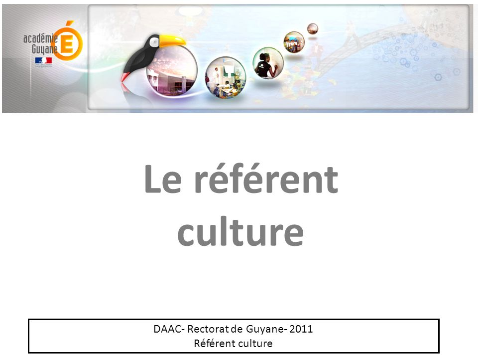 Le référent culture DAAC- Rectorat de Guyane- 2011 Référent culture