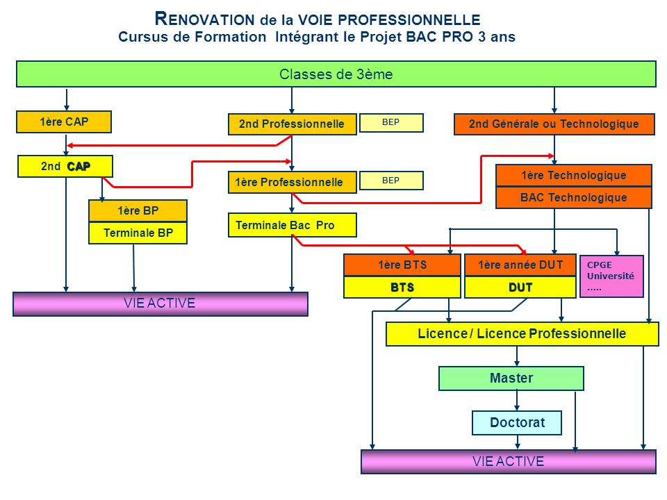 R ENOVATION de la VOIE PROFESSIONNELLE Cursus de Formation Intégrant le Projet BAC PRO 3 ans 1ère CAP 2nd Professionnelle2nd Générale ou Technologique